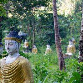 Myanmar_0514