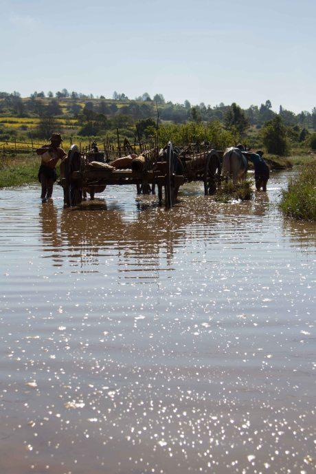 Myanmar_2260