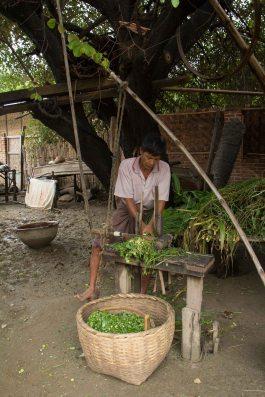 Myanmar_3861
