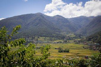 Bhutan-2783