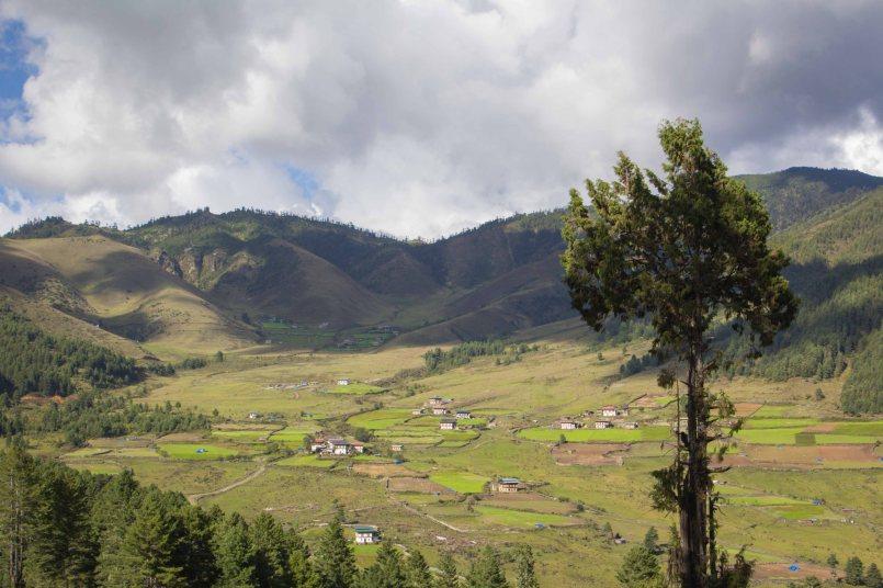 Bhutan-3105