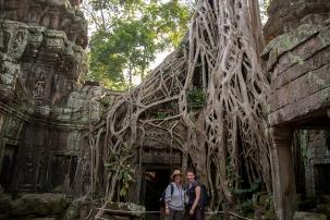 im Tempelbaum