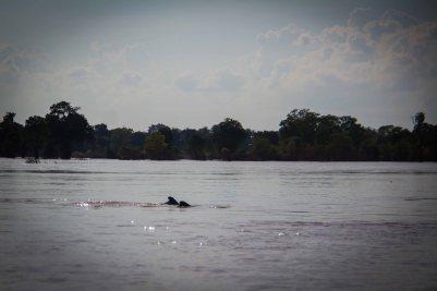 Kambodscha-9184