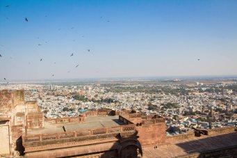 India-2756